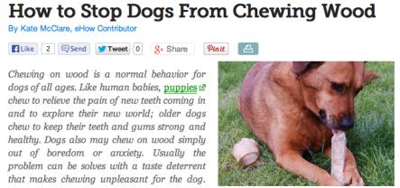 DOG WOOD